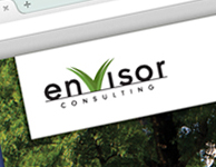 Envisor Consulting Website